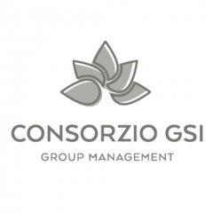 Consorzio GSI